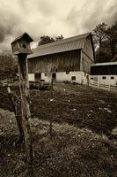 Amish Barn And Birdhouse