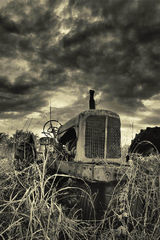 Agricultural Relic