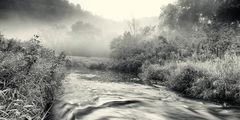 Downstream Run