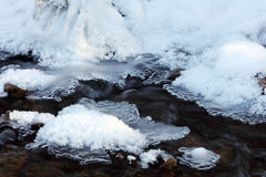Spring Creek -16°F