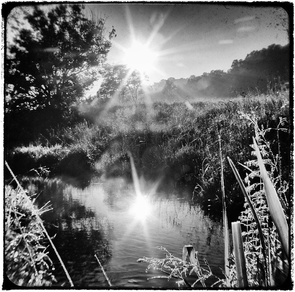 Stream, Creek, Sunburst