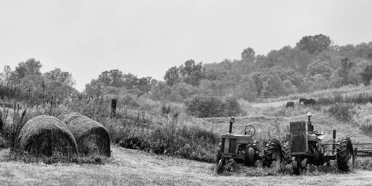 horse, farm, tractor