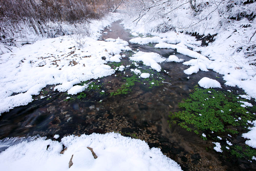 It was amazing to witness and photograph this spring fed creek for multiple days as temperatures fluctuated between -8 and -18...