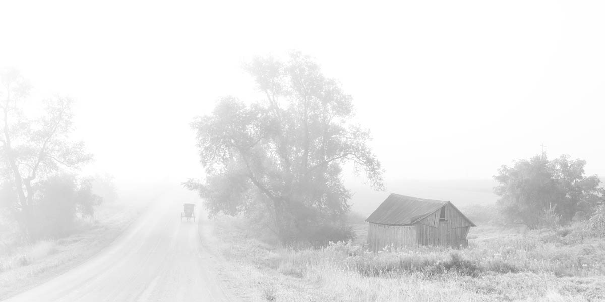 barn, fog, amish, amish buggy