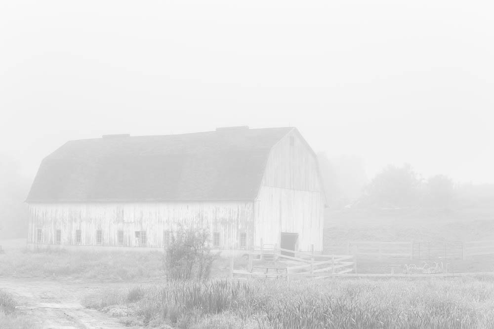 Barn, Fog, barn and fog