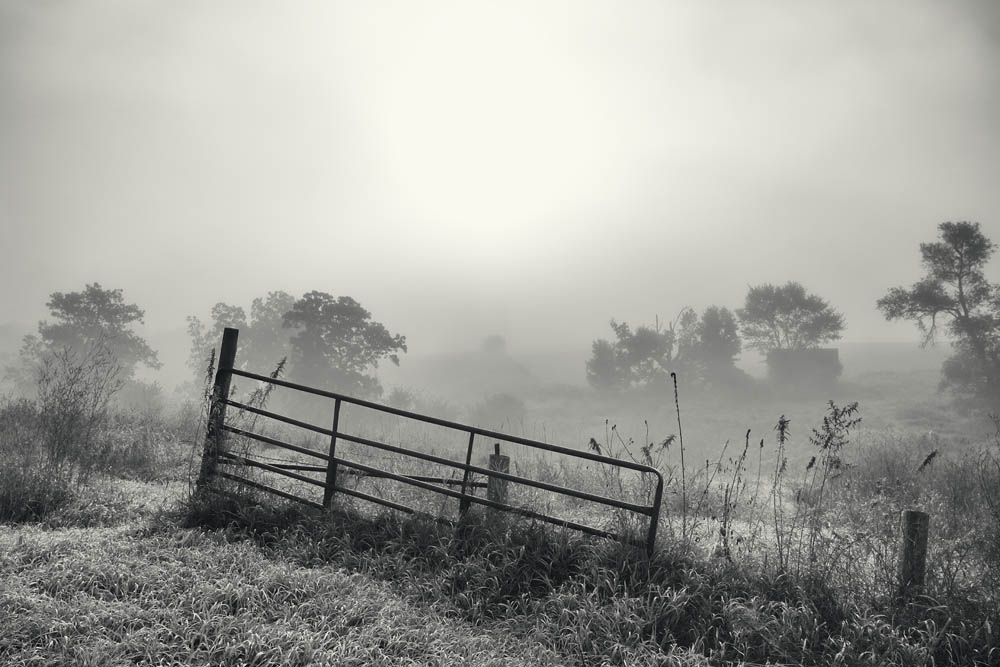 farm, gate, farm gate